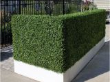 Artificial Hedges for Outdoors Artificial Outdoor Boxwood Hedge by Home Infatuation