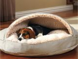 Bedside Platform Dog Bed Diy orvis Bedside Platform Dog Beds Diy No Sew Dog Bed
