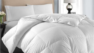 Best Fluffiest Down Alternative Comforter Microfiber Down Alternative Comforter Fluffy Down