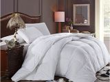 Best Fluffiest Down Alternative Comforter Super Oversized soft and Fluffy Goose Down Alternative