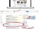 Best Pest Control Abilene Tx Gal Inc and Google Penguin the Triumph Of White Hat Seo