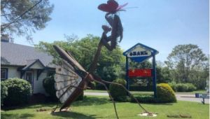 Best Pest Control toms River Nj Pest Control Company In Nj Unveils Praying Mantis