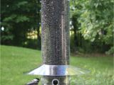 Birds Choice Classic Bird Feeder with Squirrel Baffle and Pole Birds Choice Hanging 20 Quot Classic Bird Feeder with Baffle