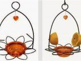 Birds Choice Flower oriole Bird Feeder Small orange Wild Birds Unlimited Mid Michigan Latest Posts