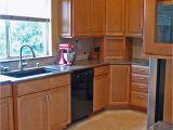 Blind Corner Kitchen Cabinet Ideas Catchy Kitchen Cabinet Blind Corner solutions On Blind Corner