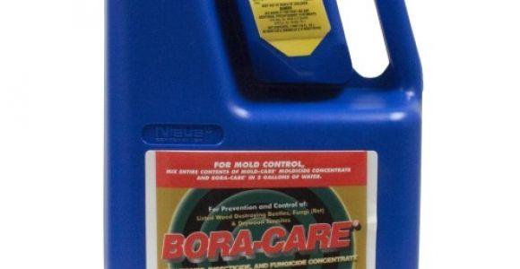 Bora Care with Mold Care Lowes Bora Care with Mold Care