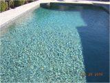 Caribbean Blue Pebble Tec Photos Pebble Tec Caribbean Blue by the Pool Design Coach Via