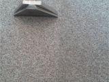 Carpet Cleaner Rental Stafford Va Carpet Cleaners In Stafford Archives Pristine Tile
