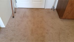 Carpet Cleaning Rio Rancho Rio Rancho Carpet Cleaning Carpet Repair Cleaning