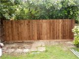 Cheap Easy Privacy Fence Ideas 10 Garden Fence Ideas that Truly Creative Inspiring and Low Cost