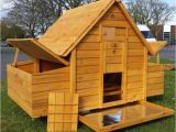 Chicken Coops for Sale In Ma Chicken Coop for Sale In Cirencester Gloucestershire