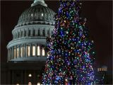 Christmas Light atlanta Ga Every Christmas Tree Worth Visiting In the D C area