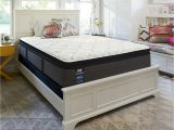 Cushion Firm Vs Luxury Firm Details About Sealy Response Performance 14 Inch Cushion Firm Euro Pillow top Mattress Full