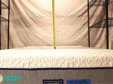 Cushion Firm Vs Memory Foam Casper Vs Tempurpedic Vs Novosbed Mattress Review Mattress Reviews