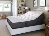 Cushion Firm Vs Memory Foam Shop Sealy Response Performance 12 5 Inch Cushion Firm California