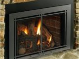 Direct Vent Gas Fireplace Insert Reviews 2019 Direct Vent Gas Fireplace Insert Napoleon Direct Vent Gas
