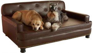 Dog sofa Bed Costco Dog sofa Bed Costco Sentogosho