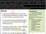 Floristerias Economicas En San Salvador Boletin Sectorial No 32 Flores