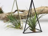 Free Standing Wrought Iron Plant Hangers Detail Feedback Questions About Geometric Iron Art Freestanding