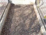 Good Flooring for Dog Kennel Az How to Build A Dog Kennel Phoenix Arizona