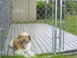 Good Flooring for Dog Kennel Outdoor Dog Kennels Reviews Guides Outdoor Dog