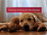 Good Flooring for Dog Owners Flooring Choices for Pet Owners Your Wild Home