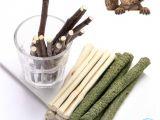 Guinea Pig Chew toys Amazon Amazon Com Flourithing 3 Types Of Combined Molar Sticks Sweet