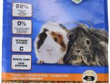 Guinea Pig toys Amazon Uk Beaphar Care Guinea Pig Food 10kg Amazon Co Uk Pet Supplies