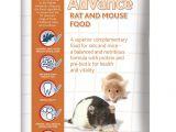 Guinea Pig toys Amazon Uk Mr Johnson S Advance Rat and Mouse Food 750 G Amazon Co Uk Pet