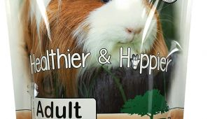 Guinea Pig toys On Amazon Amazon Com Sherwood Pet Health Guinea Pig Food Adult 4 5 Lb