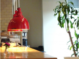 Heat Lamps are Designed to Reheat Food when Architectural Lighting Fixtures Keeping Warm Food Warm