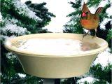 Heated Bird Bath Menards Menards Trees and Shrubs Menards Trees and Bushes