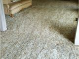 High Performance Carpet Cleaning Yuba City Ca Customers Loved How Clean the Carpet Was Yelp
