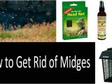 How to Get Rid Of Noseeum Bites 10 Ways to Protect Yourself From Midges top 8 Best