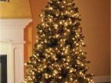 How to Restring A Pre Lit Christmas Tree Best 28 How to Restring Lights On A Prelit Christmas