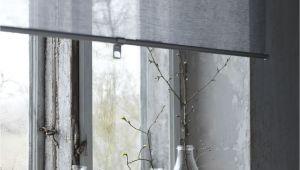 Ikea Wooden Blinds Discontinued Skogskla Ver Rolgordijn Grijs for Home Pinterest Ramen Window