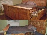 King Bed with Doggie Insert King Bed Funny Pictures Quotes Memes Funny Images