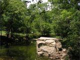 Landscape Rock Louisville Ky Landscape Designs Pineville fort Mill Rock Hill Charlotte