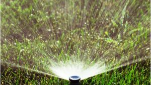 Lawn Sprinkler Repair fort Collins fort Collins Sprinkler Turn On Shut Off Sprinkler Blow Out