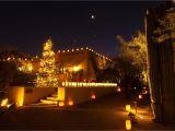 Light the Night Phoenix Las Noches De Las Luminaries Desert Botanical Gardens Phoenix
