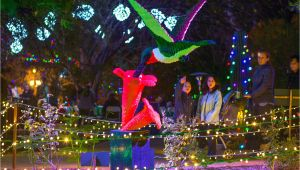 Light the Night Phoenix Museum Things to Do On Thanksgiving Day 2018 In Phoenix