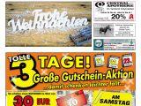 Living Desert Coupons 2019 Der Gmunder Anzeiger Kw 51 by Sdz Medien issuu