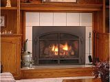 Mendota Direct Vent Gas Fireplace Reviews Gas Fire Inserts Inserts for Gas Fireplaces In Okemos Mi