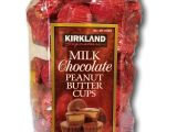 Money Saver Mini Storage Kirkland Wa Amazon Com Kirkland Singature Milk Chocolate Peanut butter Cups