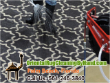 Oriental Rug Cleaning Boca Raton Pet Odor Removal Palm Beach