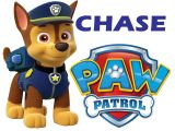 Paw Patrol Iron On Transfer Australia Paw Patrol Chase Iron On Transfer