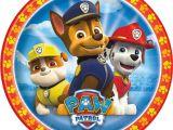 Paw Patrol Iron On Transfers Paw Patrol 4 Iron On Transfer New Ebay