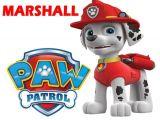 Paw Patrol Iron On Transfers Uk Paw Patrol Marshall T Shirt Iron On Transfer