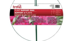 Peony Cages Home Depot Plant Support Ring 14 In Garden tools Gregrobert