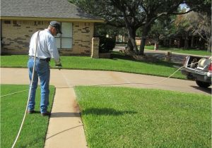 Pest Control In Abilene Tx Bug Blasters Pest Control Pest Control 209 S Pioneer